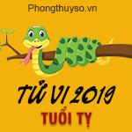 xem-tu-vi-tuoi-ty-2019