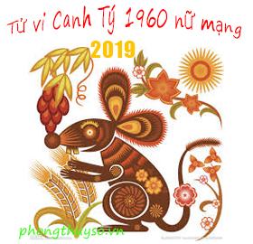 tu-vi-tuoi-canh-ty-nam-2019-nu-mang