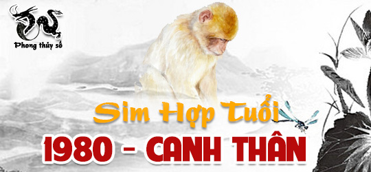 tuoi-canh-than-hop-voi-so-dien-thoai-nao