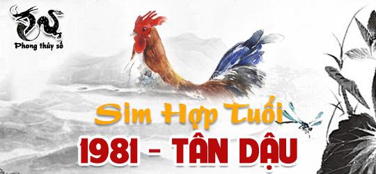 tuoi-tan-dau-hop-voi-so-dien-thoai-nao