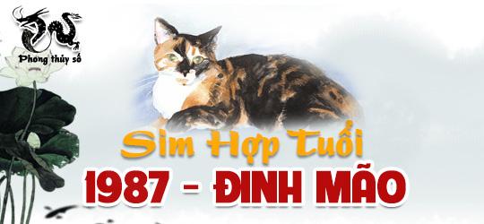 tuoi-dinh-mao-hop-voi-so-dien-thoai-nao