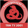 tu-vi-tuoi-tan-ty-2001-nam-2021