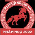 tu-vi-tuoi-nham-ngo-2002-nam-2021