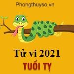 Xem vận mệnh tử vi tuổi tỵ năm 2021