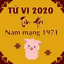 Tra cứu tử vi tuổi Tân Hợi năm 2020 nam mạng 1971 #Tốt hay #Xấu
