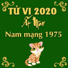 Xem bói tử vi tuổi Ất Mão năm 2020 nam mạng sinh năm 1975 CHUẨN NHẤT