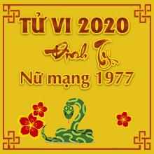 Nghe Thầy Luận tử vi tuổi Đinh Tỵ năm 2020 nữ mạng sinh năm 1977