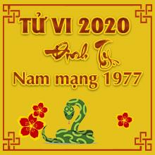 Nghe Thầy Luận Tử vi tuổi Đinh Tỵ năm 2020 nam mạng sinh năm 1977