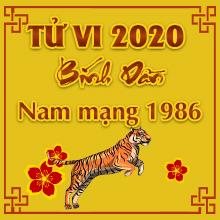 Xem bói tử vi tuổi Bính Dần năm 2020 nam mạng #1986 là Hung hay Cát?