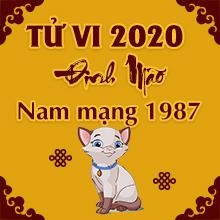Xem tử vi tuổi Đinh Mão năm 2020 - Nam Mạng Sinh Năm 1987