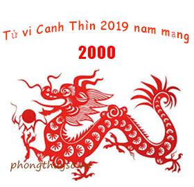 tu-vi-tuoi-canh-thin-nam-2019-nam-mang