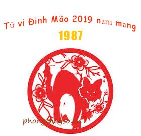 Luận tử vi tuổi Đinh Mão năm 2019 nam mạng 1987 là Tốt hay Xấu?