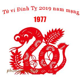 Xem bói tử vi tuổi Đinh Tỵ năm 2019 nam mạng 1977 chính xác nhất