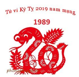 tu-vi-tuoi-ky-ty-nam-2019-nam-mang