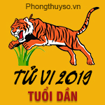 xem-tu-vi-tuoi-dan-nam-2019
