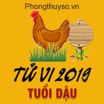 xem-tu-vi-tuoi-dau-nam-2019