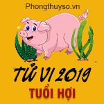 xem-tu-vi-tuoi-hoi-nam-2019