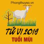 xem-tu-vi-tuoi-mui-nam-2019