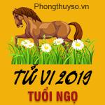 xem-tu-vi-tuoi-ngo-nam-2019