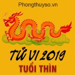 xem-tu-vi-tuoi-thin-nam-2019