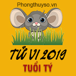 xem-tu-vi-tuoi-ty-nam-2019