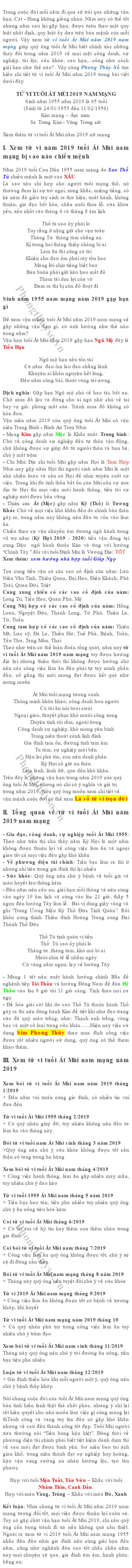 tu-vi-tuoi-at-mui-nam-2019-nam-mang