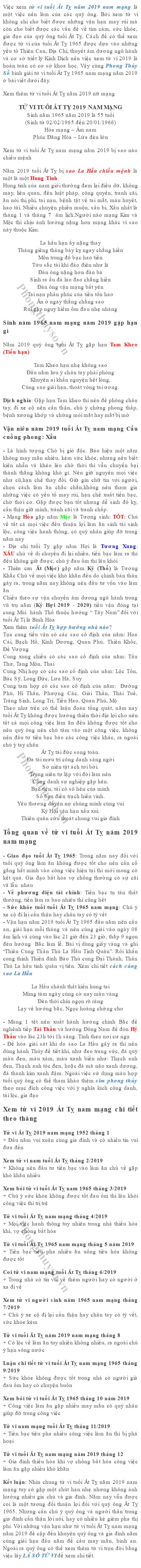 tu-vi-tuoi-at-ty-nam-2019-nam-mang