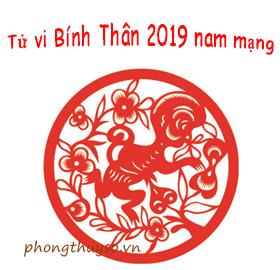 tu-vi-tuoi-binh-than-nam-2019-nam-mang