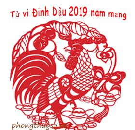tu-vi-tuoi-dinh-dau-nam-2019-nam-mang