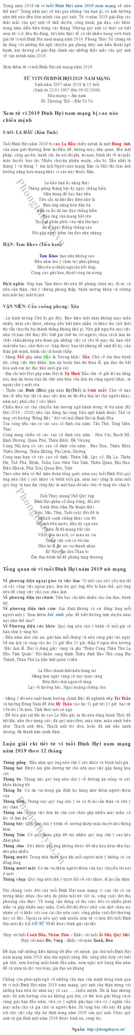 tu-vi-tuoi-dinh-hoi-nam-2019-nam-mang