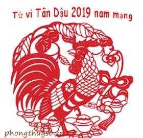 tu-vi-tuoi-tan-dau-nam-2019-nam-mang