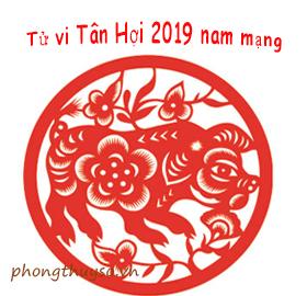 tu-vi-tuoi-tan-hoi-nam-2019-nam-mang
