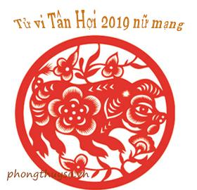tu-vi-tuoi-tan-hoi-nam-2019-nu-mang