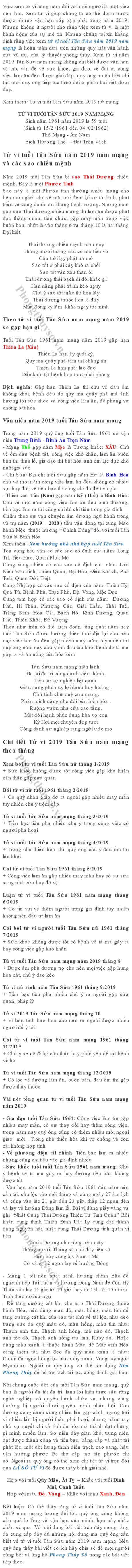 tu-vi-tuoi-tan-suu-nam-2019-nam-mang