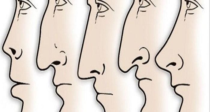 Tổng quan về tướng mũi của mỗi người